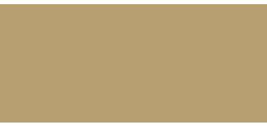 Royal Water Retina Logo